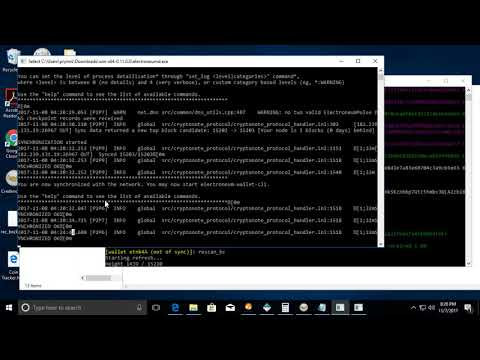 Electroneum cli wallet using and fixing common issues for beginners