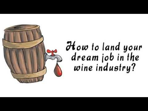 Winejobs: how to land your dream job in the wine industry?