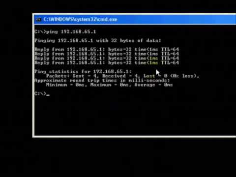 Ping ip address for network